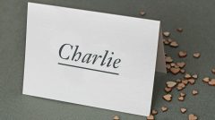 printed place card